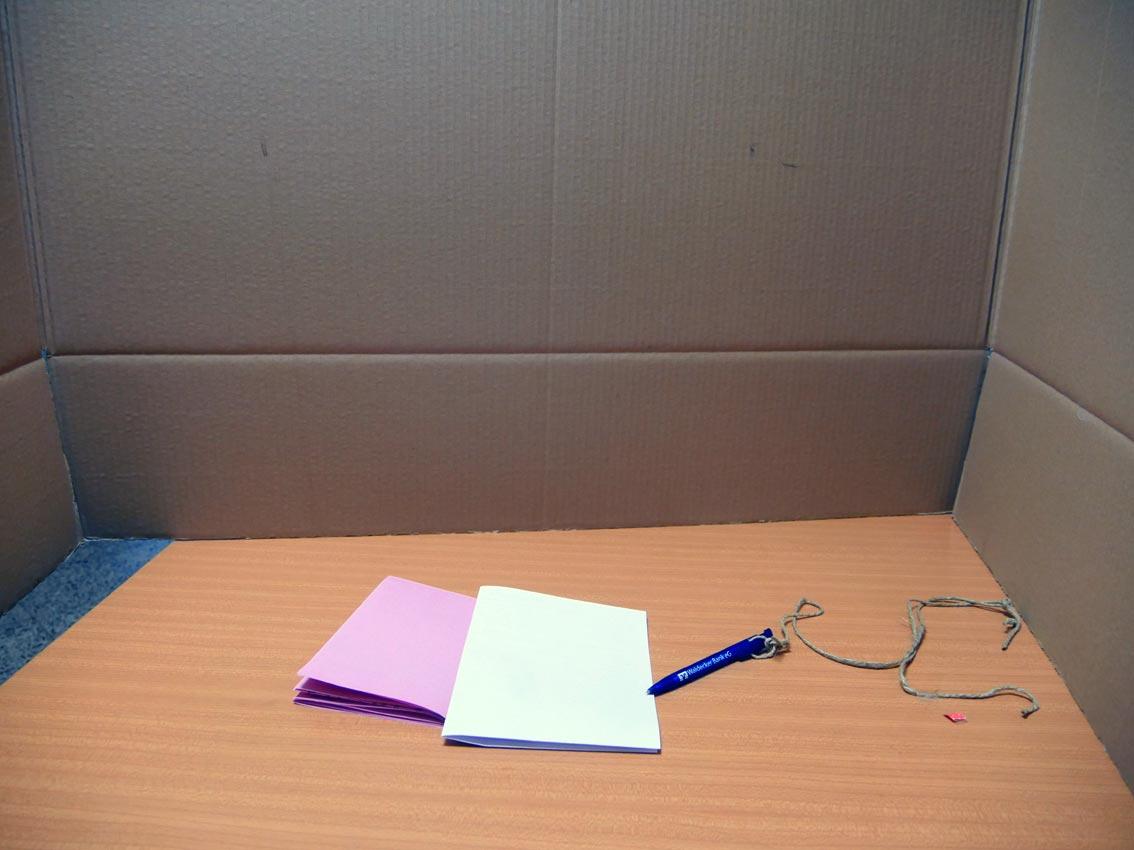 pappkarton flair cjd update. Black Bedroom Furniture Sets. Home Design Ideas