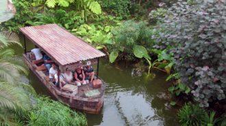Reise in den Regenwald | Foto: privat