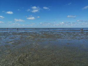 Das Wattenmeer bei Cuxhaven