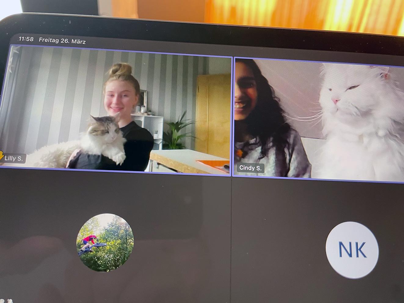 Auch Teams-Sitzungen gehen weiter. Zur Freude interessierter Haustiere. Foto: Screenshot 7a/CJD Oberurff